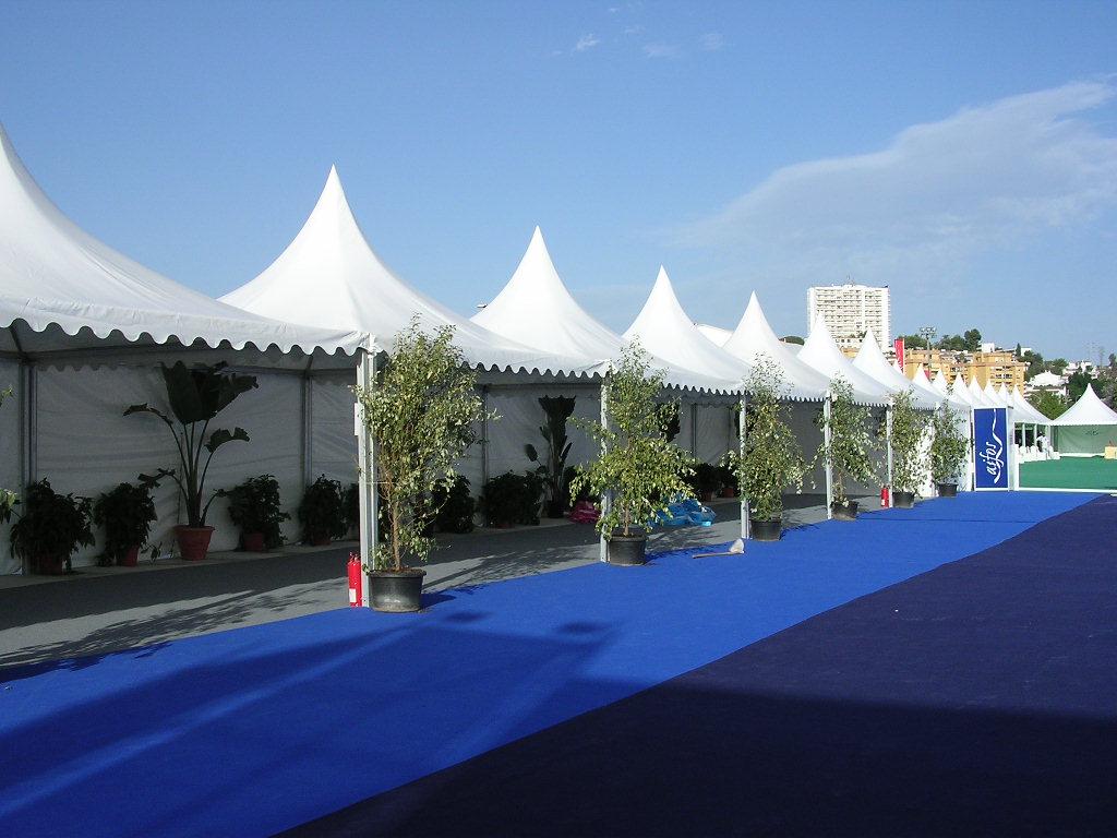 Concierto Julio Iglesias en Marbella
