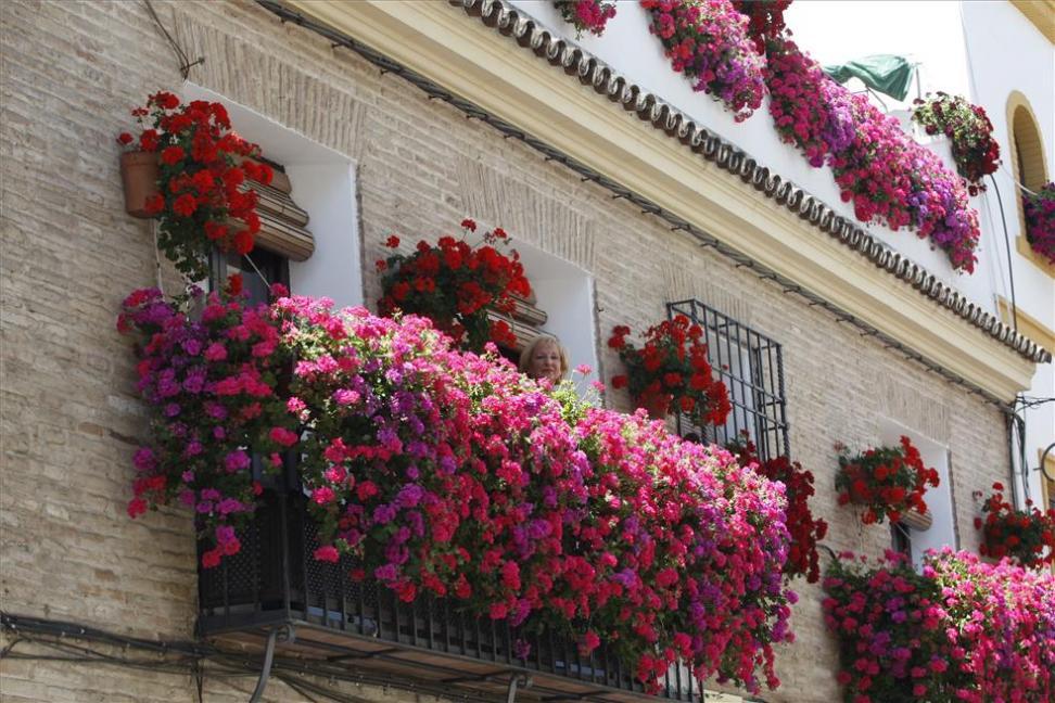Fiesta de las rejas y balcones. Fuente: Diariocordoba.com