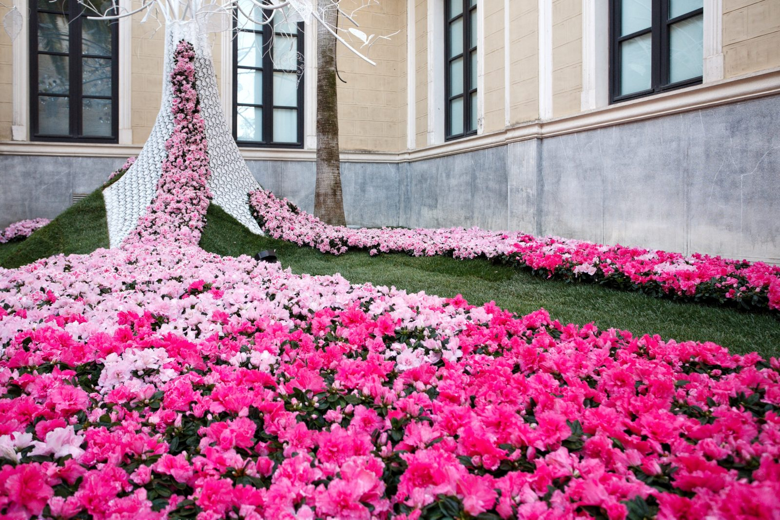 FLORA. Festival Internacional de las flores en Córdoba