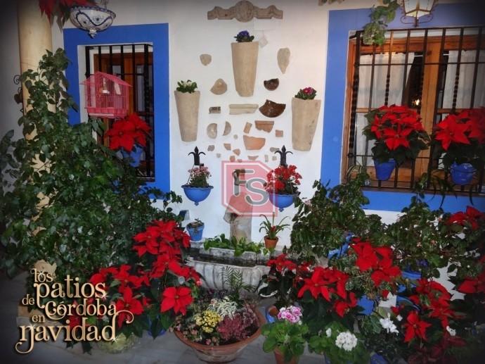 Navidades en Córdoba. Fuente: ArteEnCórdoba