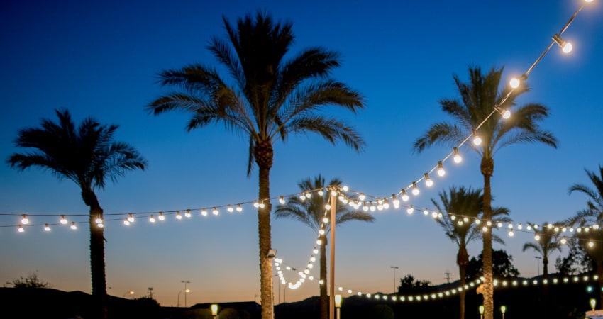 Cosas que no pueden faltar en tu boda otoñal - Festivales del Sur
