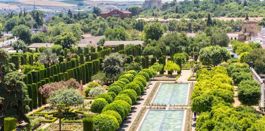 Planes en Córdoba en Agosto